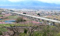 山梨の春 お花見ドライブスポット